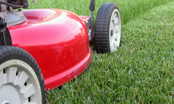 Lawn Care in Lancaster PA Lawn Care Services in Lancaster PA Quality Lawn Care in Lancaster PA