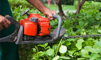 Shrub Removal in Lancaster PA Shrub Removal Services in Lancaster PA Shrub Care in Lancaster PA Landscaping in Lancaster PA